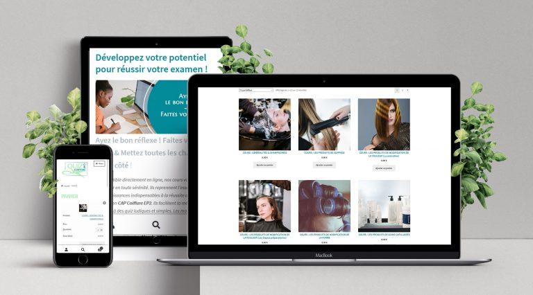 Site web sur mesure : Site e-commerce - Création dans le Morbihan, Bretagne, France et France métropolitaine